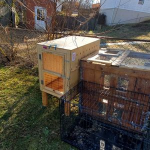 Pigeons Coop for Sale in Woodbridge, VA
