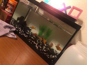 Fish tank ( no fish ) for Sale in Rancho Cucamonga, CA