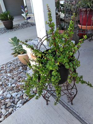 Vintage Child Wrought Iron Chair for Sale in Hutto, TX