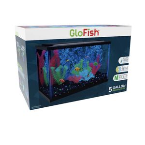 GloFish 5-Gallon Aquarium Kit with LED and Tetra Whisper Filter for Sale in Winchester, CA