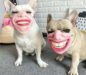 Pet Mask For Pet Lovers for Sale in Los Angeles, CA