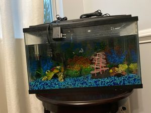 Fish Tank for Sale in Morrisville, NC