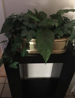 Fake House Plant for Sale in San Jose, CA