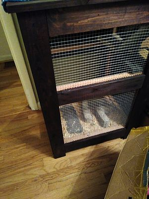 Reptile cage for Sale in Tigard, OR